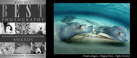 Immagine NatureBest2011 2011 NATURE'S BEST PHOTOGRAPHY WINDLAND SMITH RICE INTERNATIONAL AWARDS