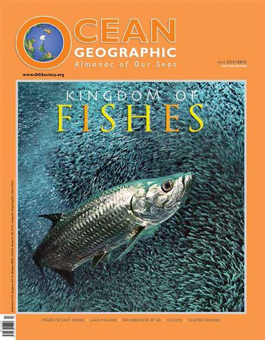 Copertina no.23 OG Copertina su Ocean Geographic Magazine   no. 23